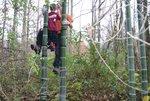 Hayden-bamboo-rope-ladder_007.jpg