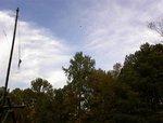 trebuchet - pumpkin flies over the trees.jpg