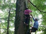 tree climb 022 (Small).jpg