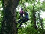 tree climb 023 (Small).jpg