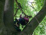 tree climb 031 (Small).jpg
