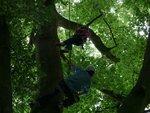 tree climb 046 (Small).jpg
