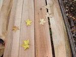 wood drying 2008 007.jpg