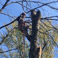 Treeaddict
