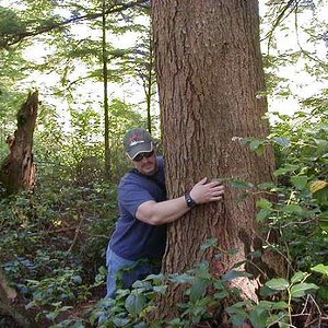 treehugger_136.jpg